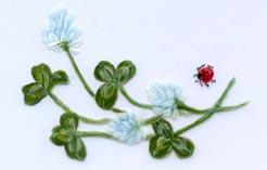 clover ladybug aunan