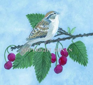 Bird and Cherries