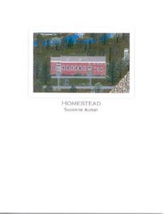 homestead200990